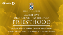 Ordination graphic