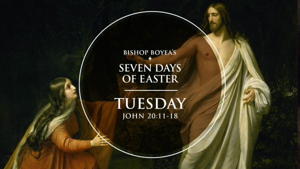 Watch: Bishop Boyea's Seven Days of Easter | Tuesday