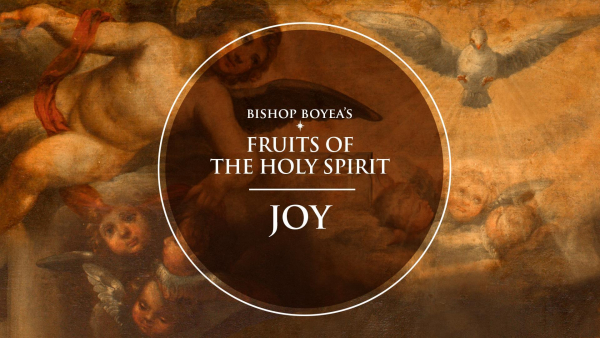 Fruits of the Holy Spirit - Joy